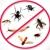 Independent Pest Control
