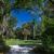 McKee Botanical Garden-