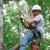 McBride Tree Service