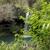 Maui Hiking Safaris