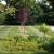 3-D Lawncare & Landscaping
