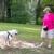 Classy Canine Training Academy
