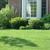 Grass Guardian Lawn Service