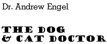 the dog and cat doctor