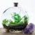 Bottled Blooms Terrariums & Indoor Plants
