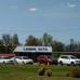 Lannie's Auto Sales