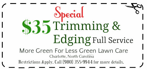 tree trimming service