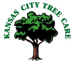 KC Tree Care
