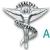 Chiropractic Association Of Oklahoma