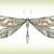 Odonata Psychotherapy & Retreat Center