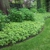 Green Expectations Landscaping Co., Inc.