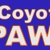 Coyote Pawn