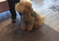 A Yuppy Puppy - Modesto, CA