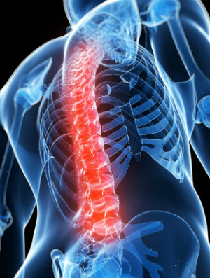 spine-injury-orthopedics