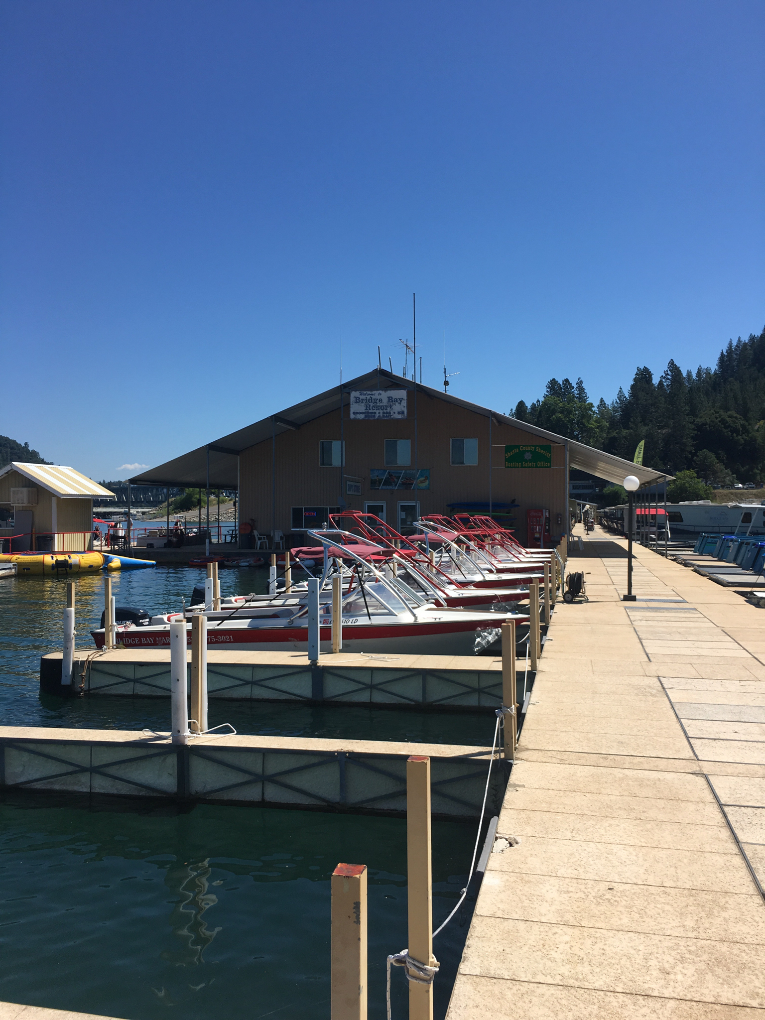 Best of mount shasta ca things to do nearby for Shasta motors redding california