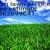 Acm lawn services