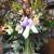 A Gainesville Florist