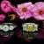 Diamond Banque Jewelry & Loan