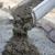 CLC Concrete Construction