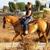 Sunshine & Daydreams Horseback Riding