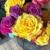 Violets Inc