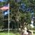 Bonnie's Notary/Paralegal Service LLC