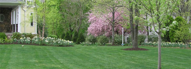 Landscape Contractors in Bergen County