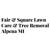 Fair & Square Lawn Care - Tree, Snow Removal