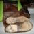 Shoe Wiz