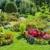 Denver Sprinkler and Landscape Inc.