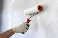 buiding painters