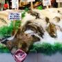 Pike Place Fish Market Inc