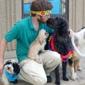 Best Friends Pet Care - Chicago, IL