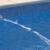 Dewey's Pool Service