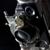 RTS Photography & Design