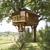 Tree-fort builders
