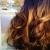Hair Color By Deanna