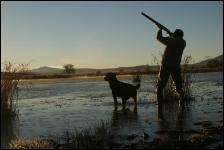 Hunter Safety Training