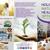 Holistic Natural Health Options Inc.