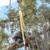 Pete & Ron's Tree Service