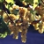 Berbiglia Wine & Spirits