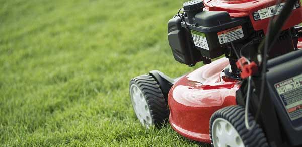 lawn care services, lawn maintenance