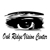 Oak Ridge Vision Center