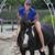 Beach Horseback Rides