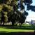 The Art School of Mulford Gardens