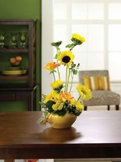 Scott's Floral Design, Denmark SC