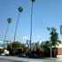 Brier Oak On Sunset Inc