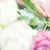 Ambati Flowers