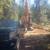 Skagit Log and Construction Inc.