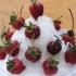 de Medici Cucina Italiana